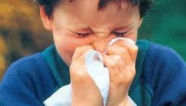 انفلوئنزا وائرس